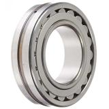 EBC 6009 C3  Single Row Ball Bearings