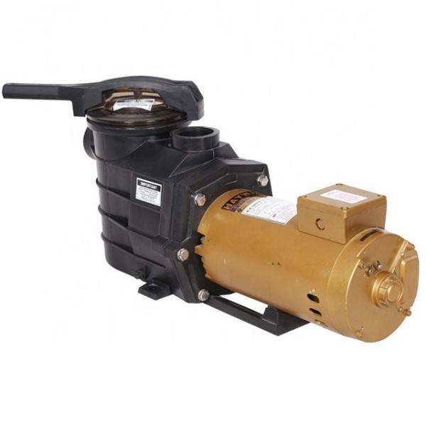Vickers PV063R9E1D3NSCBK0031+PV063R9E1 Piston Pump #1 image