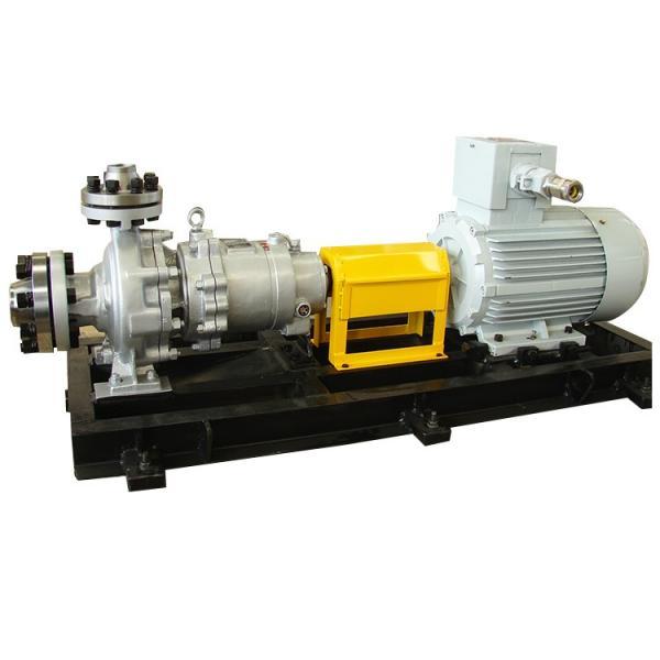 Vickers PV080L1L1T1NFRC4211X5899 Piston Pump #1 image