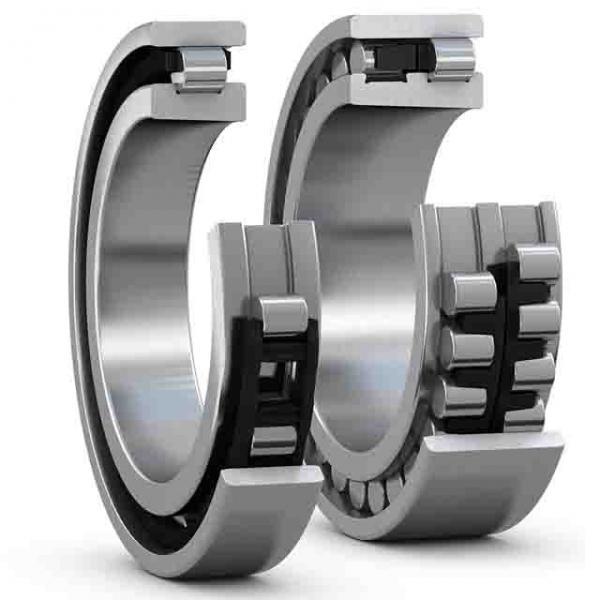 FAG NJ2308-E-TVP2-QP51-C4  Cylindrical Roller Bearings #1 image