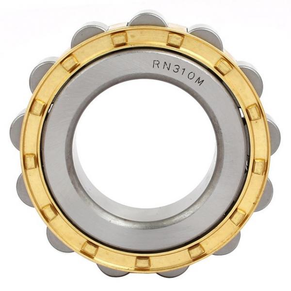 FAG NU213-E-M1  Cylindrical Roller Bearings #1 image